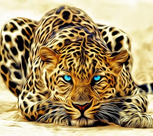 Снятся леопарды