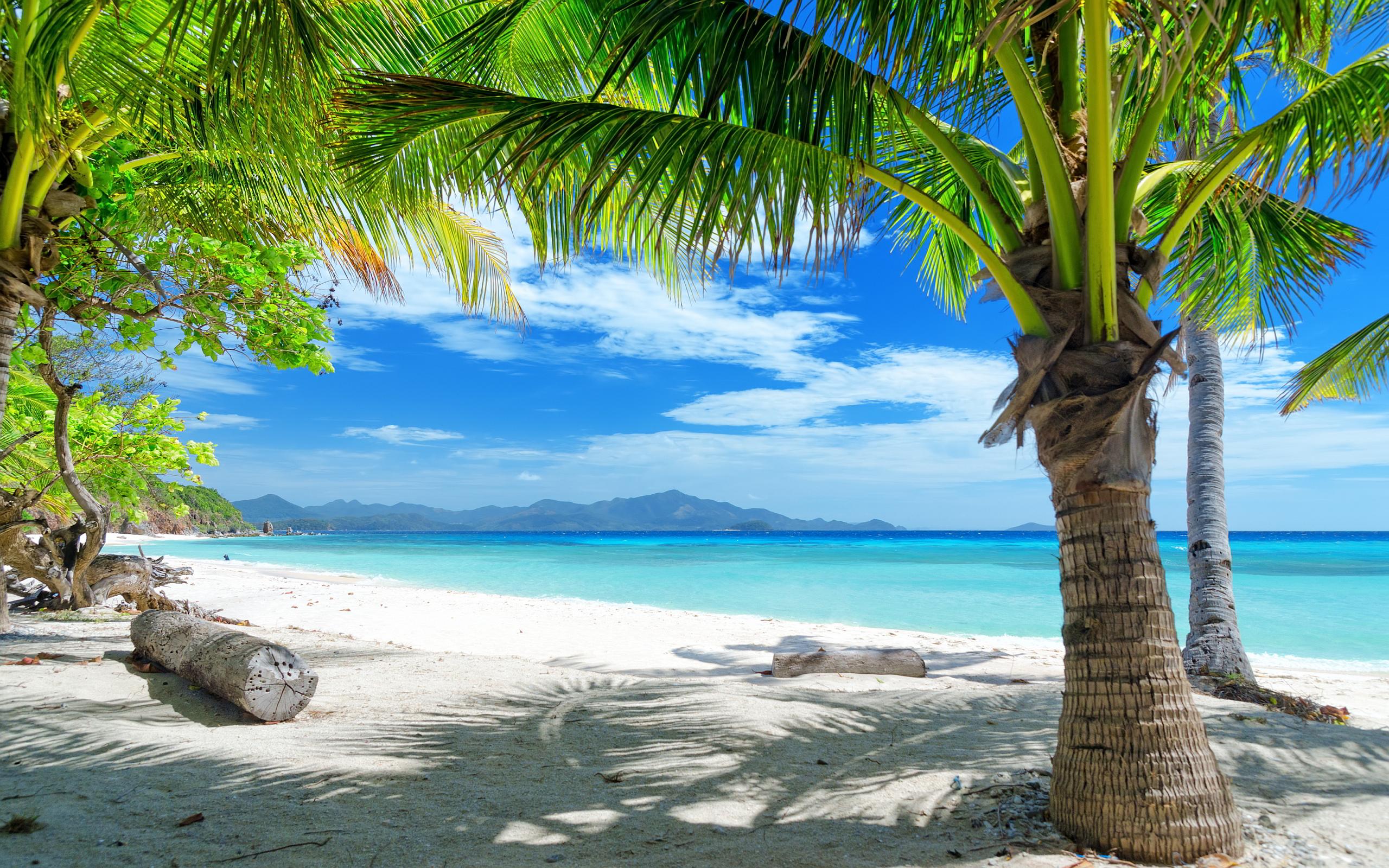 Tropics  Wikipedia
