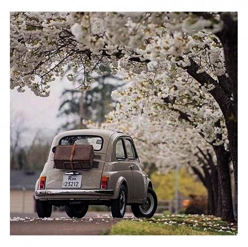 1carBlossoms.jpg