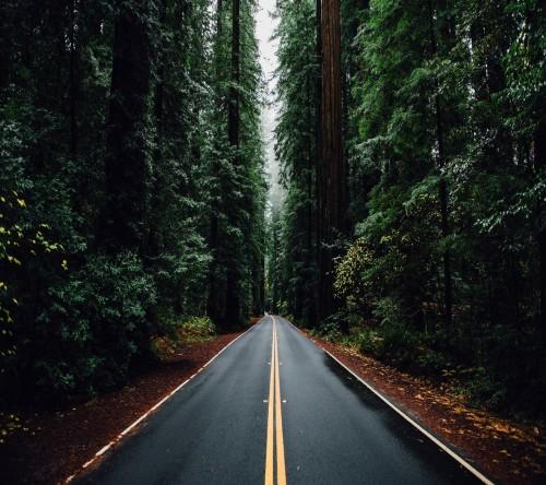Road-wallpaper-10953158.jpg