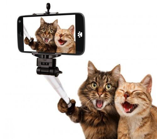 selfi.jpg