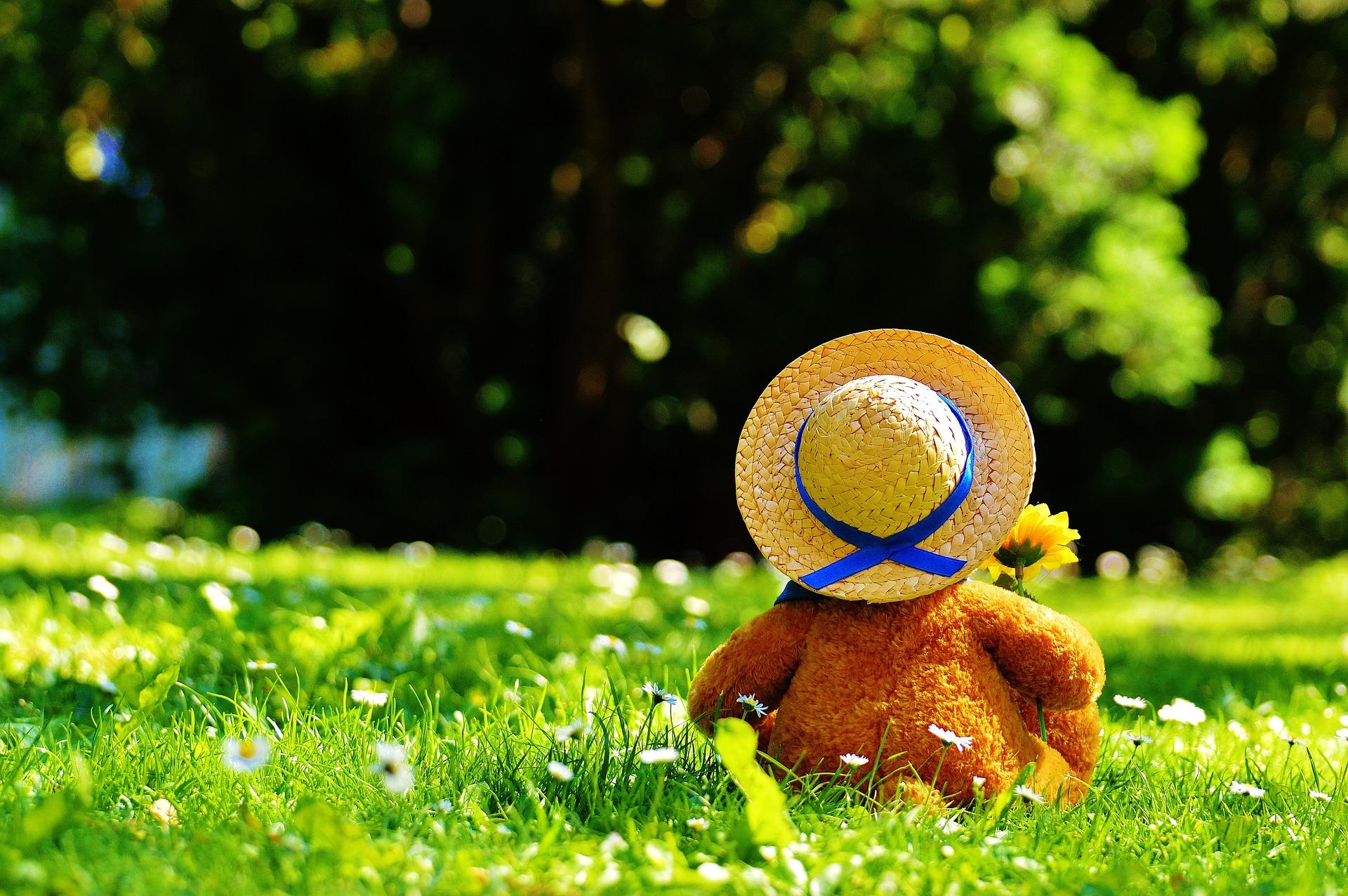 teddy-bear-797577_1920.jpg