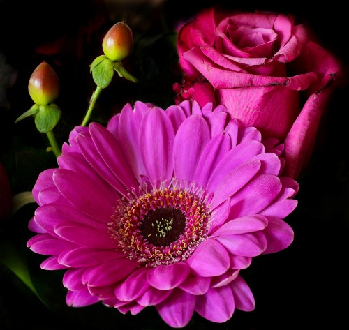 flower-344109_1280.md.jpg