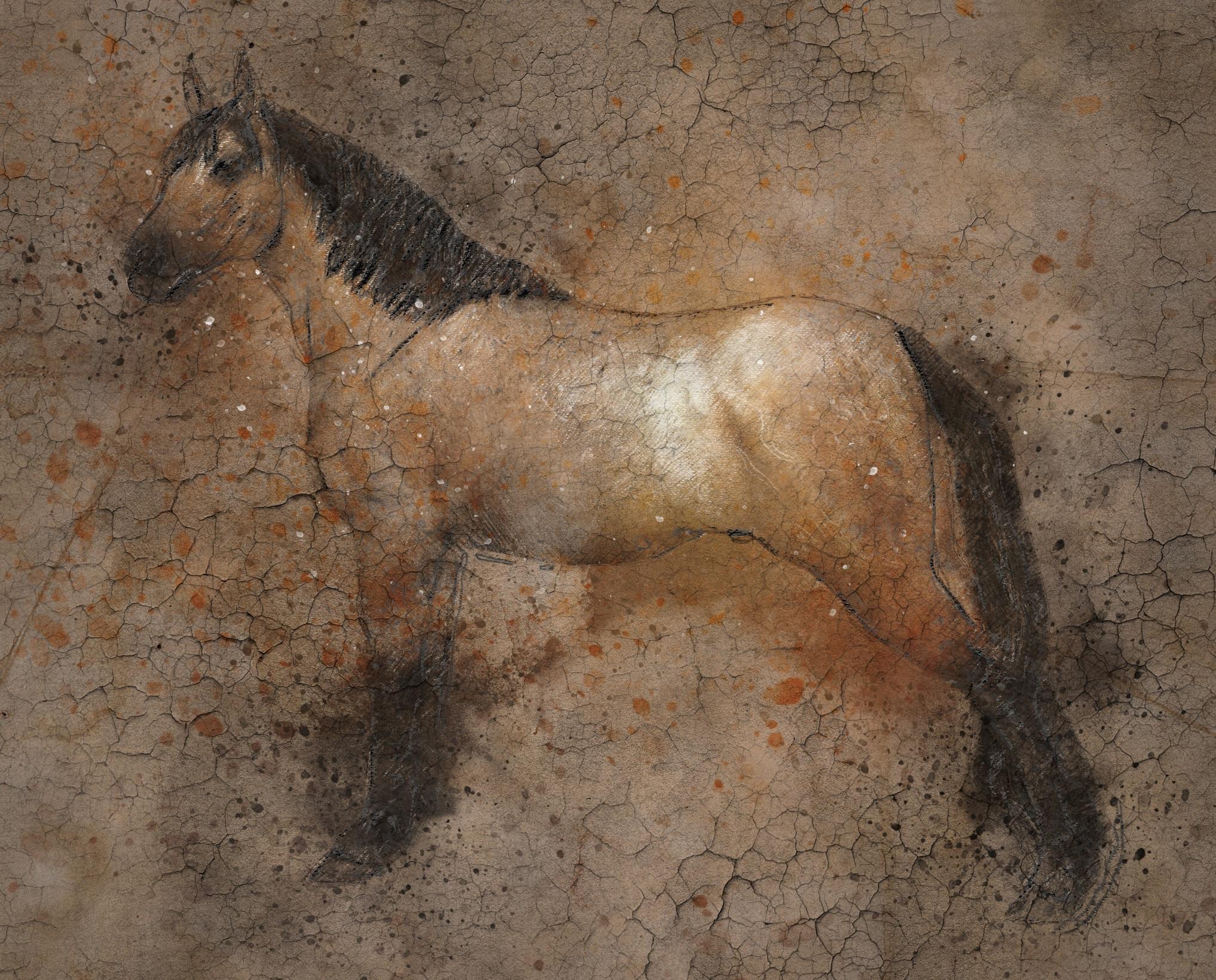 horse-2095404.jpg