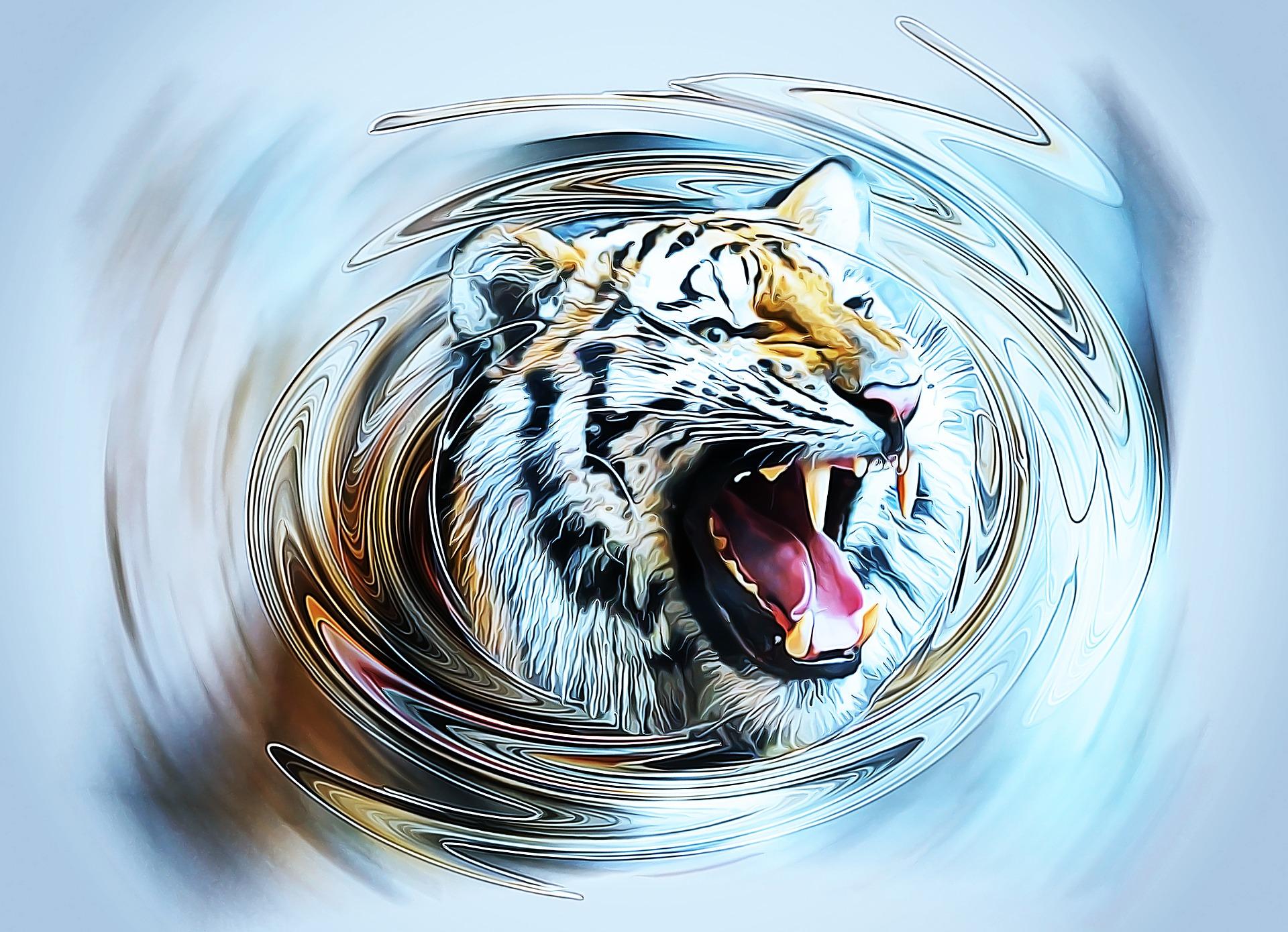 tiger-2223451_1920.jpg