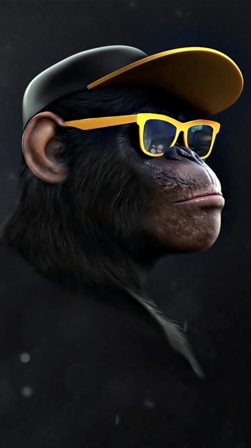 monkey_swag.jpg