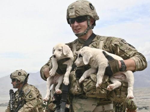 Militarywithadog.jpg