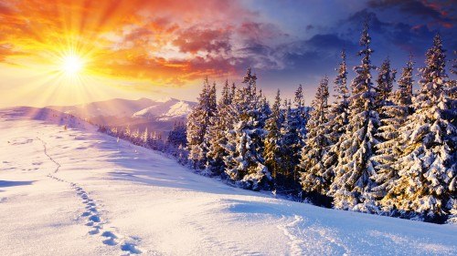 latest-winter-wallpaper_033820338_27.jpg