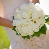 bridal-357500_1920.th.jpg