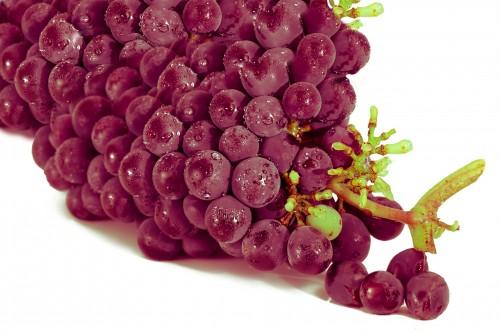 grape-2104639_1920.md.jpg