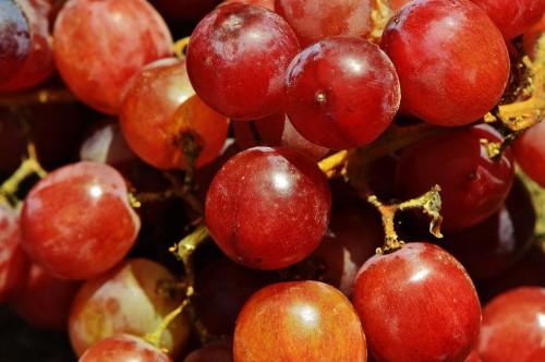 grapes-1517317_1920.md.jpg