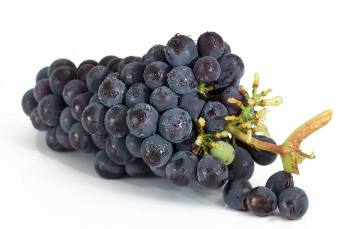 grapes-2032838_1920.md.jpg