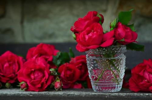 roses-821705_1920.md.jpg