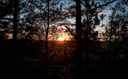 forest-sunset-at-levis-mound.md.jpg