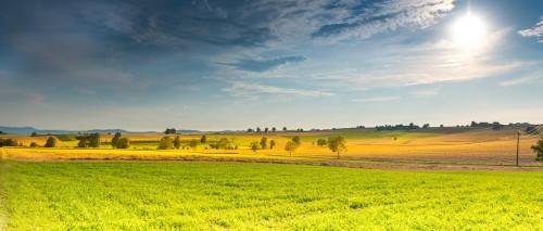 landscape-666927_1920.md.jpg