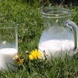 milk-1377564_1920.th.jpg