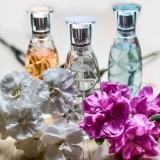 perfume-1433654_1920.th.jpg