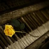 piano-1239729_1280.th.jpg