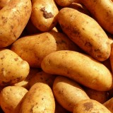 potatoes.th.jpg
