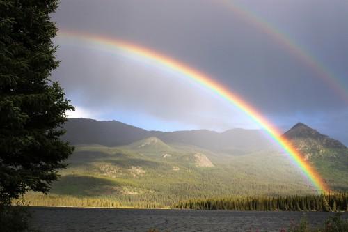 rainbow-436171_1920.md.jpg