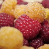 raspberries-796484_1920.th.jpg