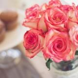 roses-1139010_1920.th.jpg