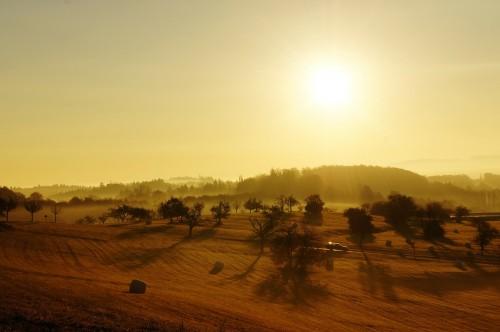 sunrise-73074_1920.md.jpg