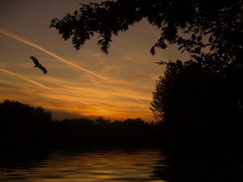 sunset-113193_1920.md.jpg