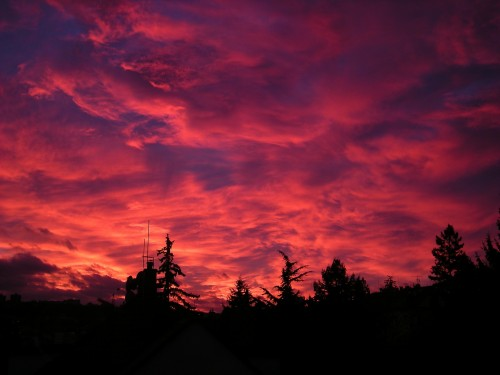 sunset-20398_1920.md.jpg