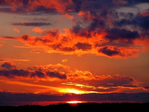 sunset-288531_1280.md.jpg
