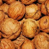 walnut-101425_1920.th.jpg