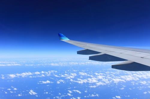 wing-221526_1920.md.jpg