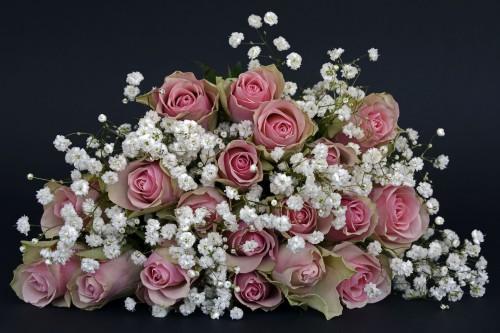 roses-1420719_19202.md.jpg
