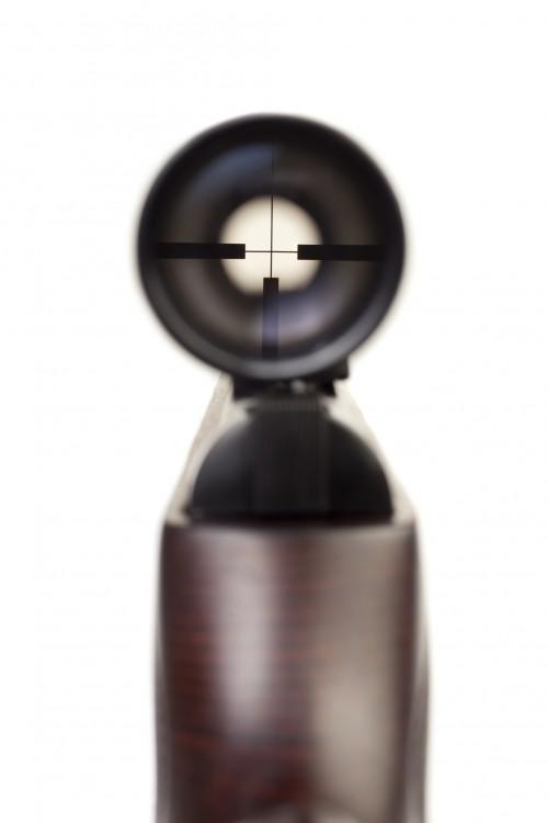 OpticalSight3.jpg