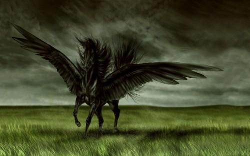 CjgUidh-fantasy-horse-wallpaper.jpg