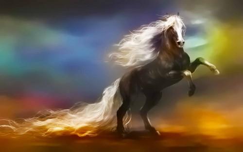 NpgcsVJ-fantasy-horse-wallpaper.jpg