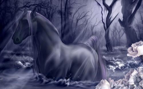 tM1omGl-fantasy-horse-wallpaper.jpg